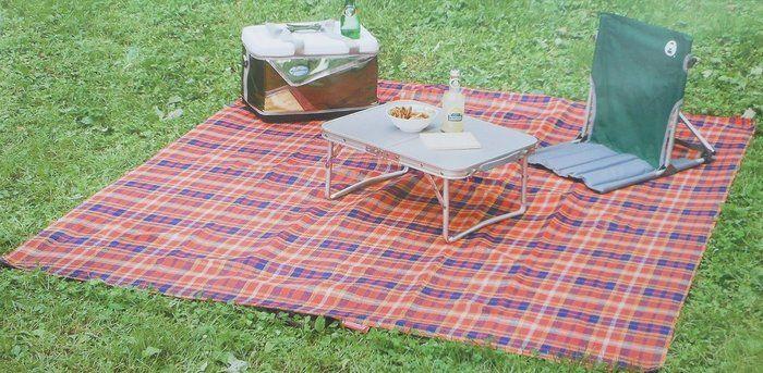 チェック柄のレジャーシートを使ったピクニック