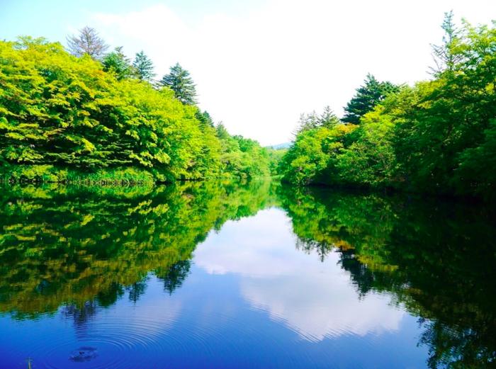 軽井沢の湖と新緑の森