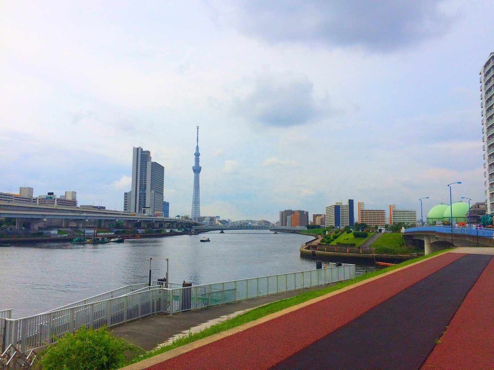 汐入公園内の隅田川沿いのテラス・遊歩道から見えるスカイツリー