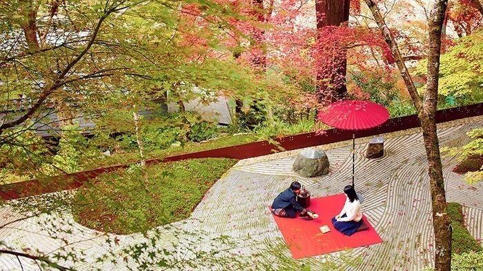 星野や京都の紅葉お茶会の様子