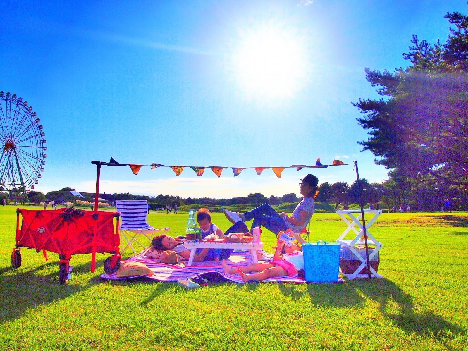 国営ひたち海浜公園のピクニック風景