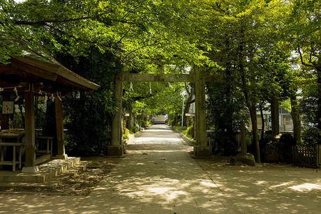 石神井公園の石神井城跡