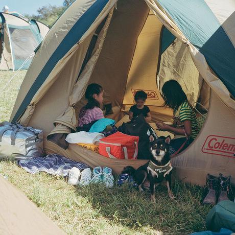 朝霧ジャンボリーオートキャンプ場にテントを張る親子