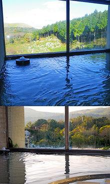 秋芳ロイヤルホテル 秋芳館の温泉