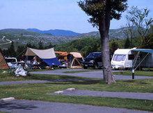 秋吉台家族旅行村のフリーサイト