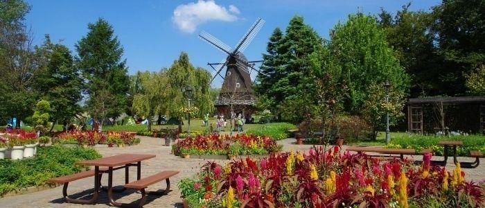 アンデルセン公園の花壇と風車