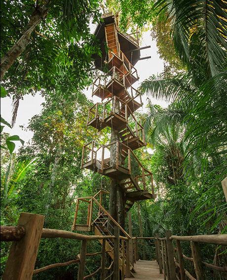 ペルーにあるツリーハウス型施設