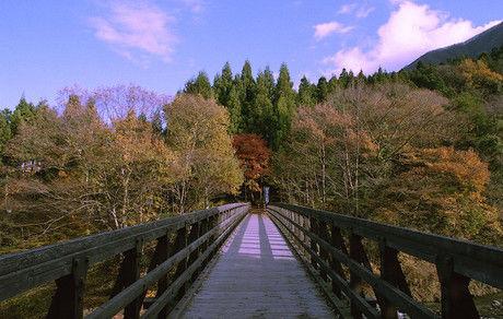 森の中にかかった橋と紅葉