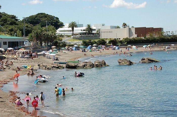 観音崎公園と東京湾で遊ぶ人々