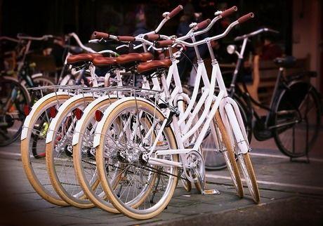 パレスサイクリングの貸し出し自転車