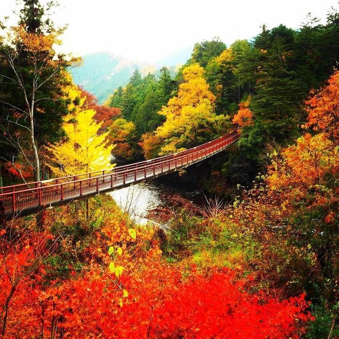 秋川渓谷の紅葉の景色