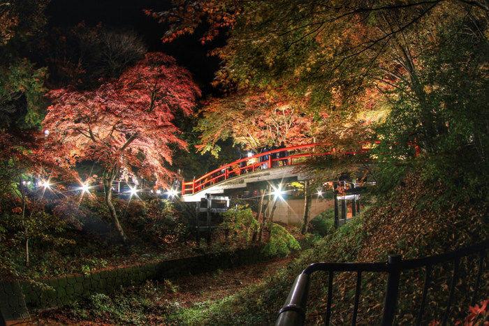 河鹿橋の紅葉のライトアップ