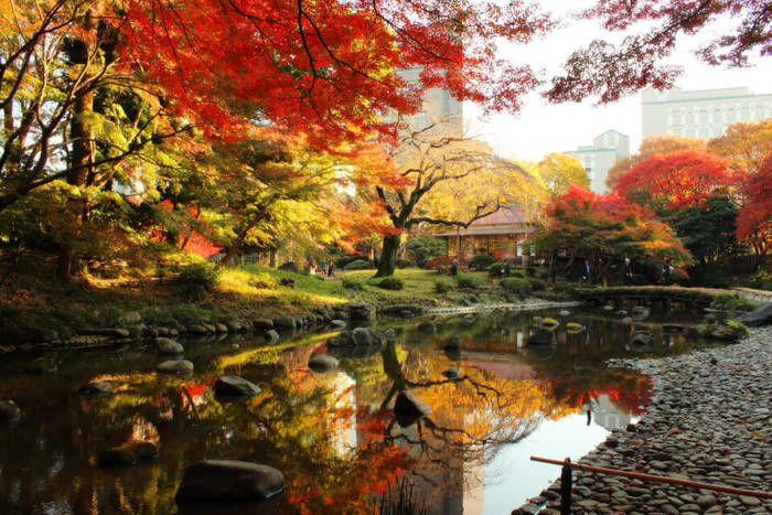 文京区の小石川後楽園の紅葉と池