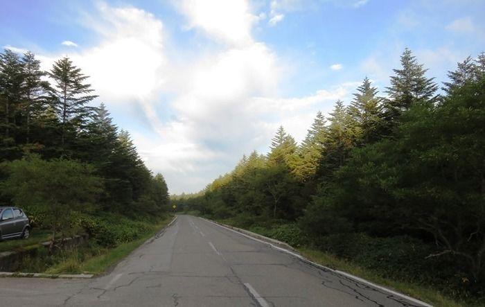 麦草峠~茶臼山~縞枯山の道路