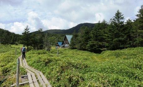 山小屋、縞枯山荘までの道