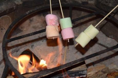 焚き火で炙られているマシュマロ