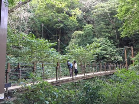 高尾山の吊り橋