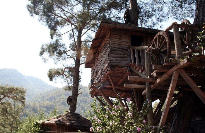 秘密基地のようなツリーハウス