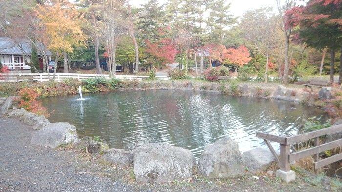 PICA富士西湖内のニジマス釣り堀