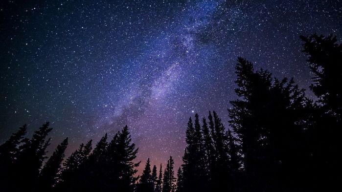 キャンプサイトから見える星空