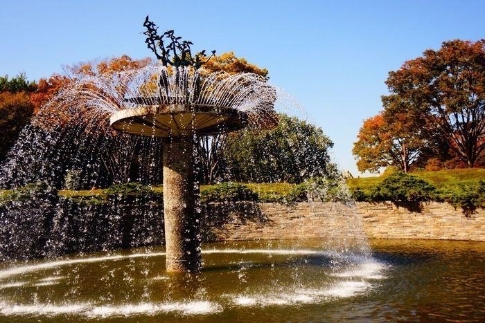 紅葉と噴水