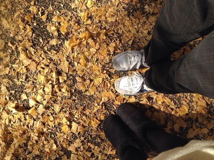 地面に落ちたイチョウの葉とスニーカーをはいた足元