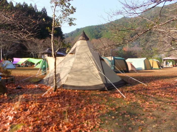 川湯温泉野営場木魂の里に張られたテント