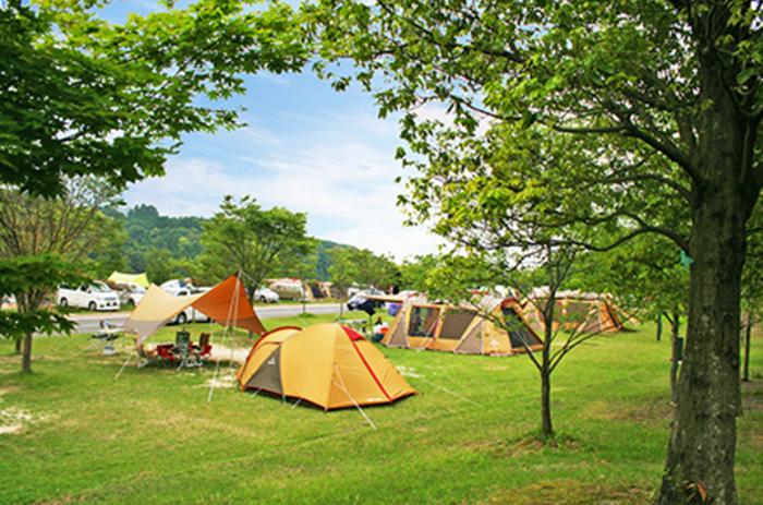 青空の下のキャンプサイトの様子