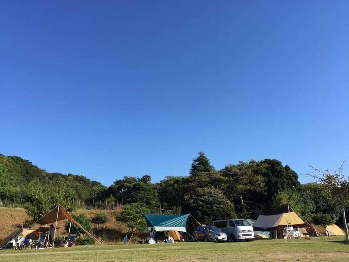 志摩オートキャンプ場のサイト