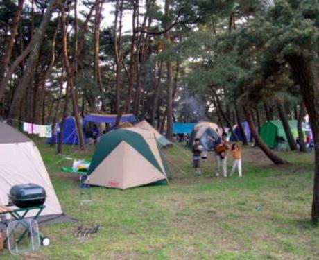 大洗キャンプ場のテントサイト