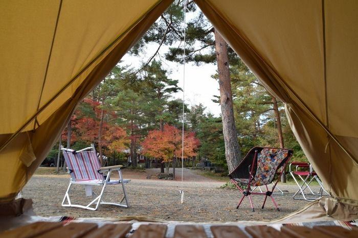ベル型テントの中からの景色