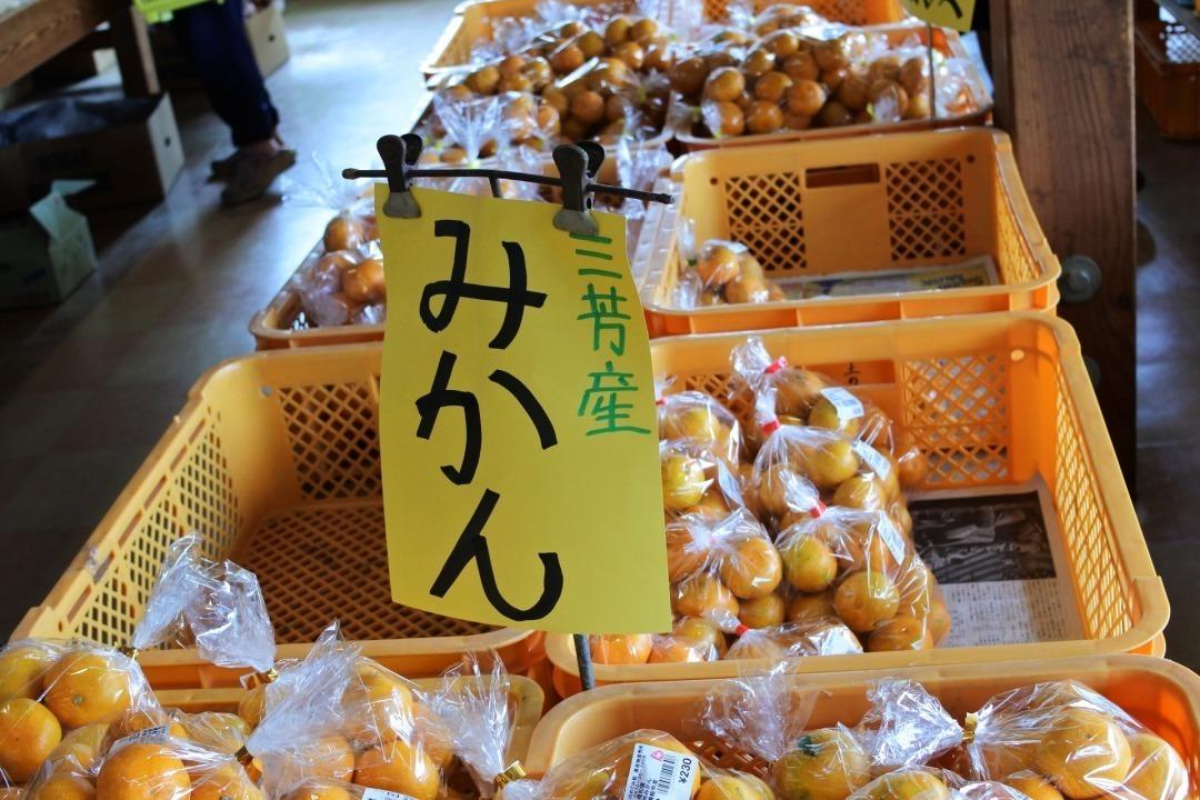道の駅,三芳村,鄙の里,みかん,レモン,柿