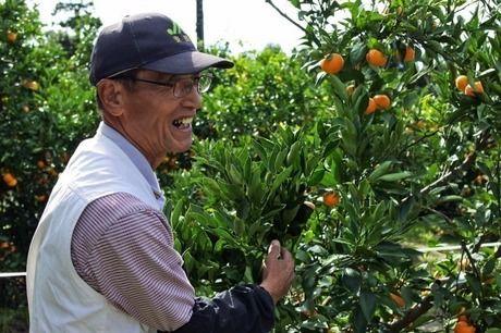 千葉県南房総市、みかん農園「三平まさのぶ農園」の三平さん