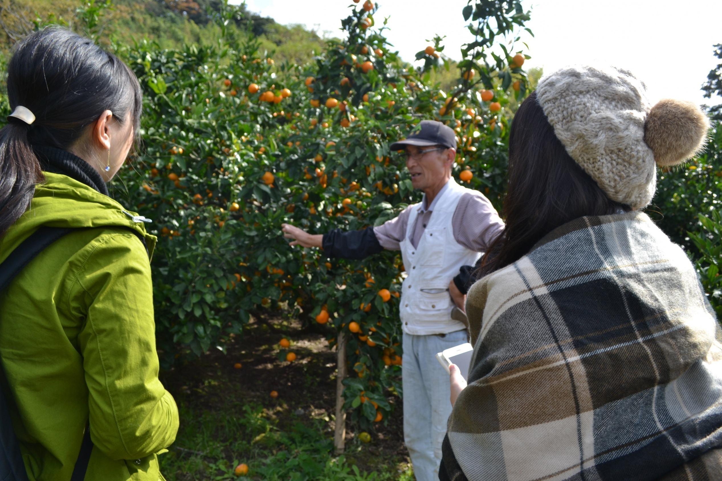 農家の人の話を聞く女性