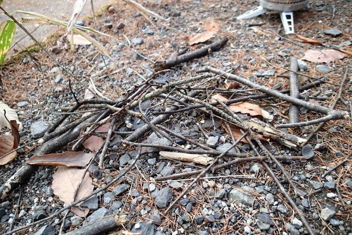 落ち葉や小枝