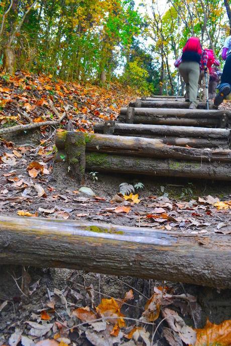 """""""200段の階段""""に挑戦するモンベルイベントの参加者の様子"""