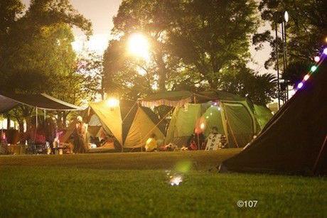 光で照らされるキャンプサイト