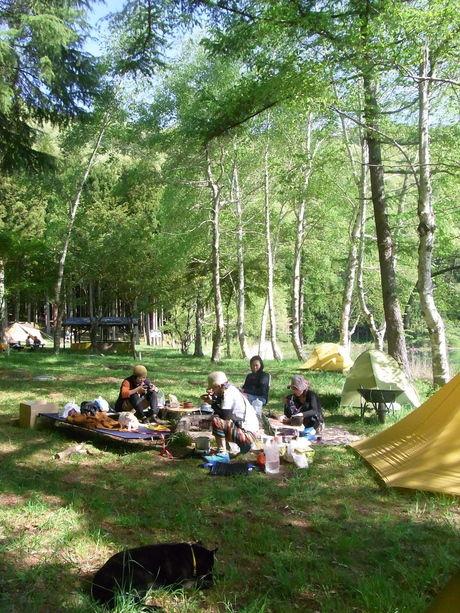 広場でピクニックを楽しむ女性たち