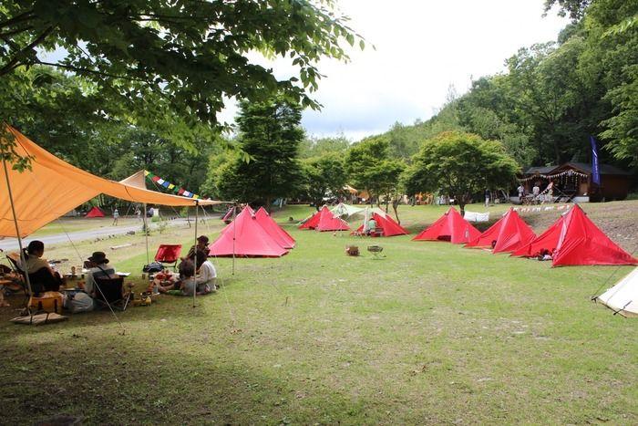 草原に広がるテントの様子
