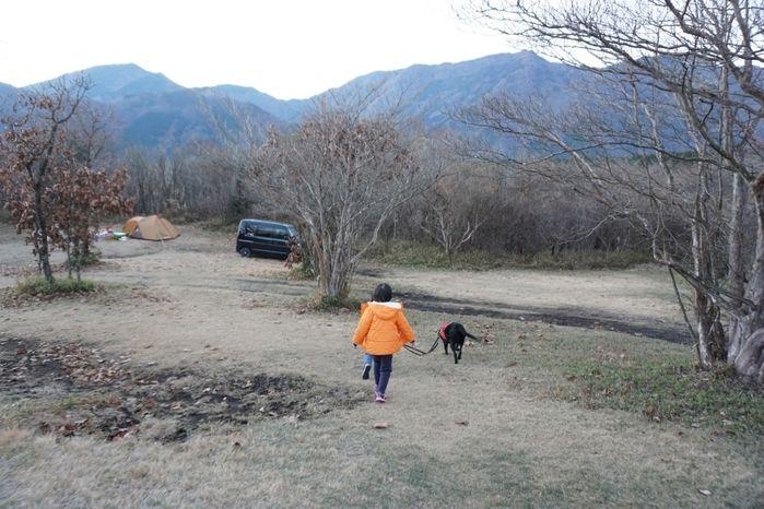 朝霧ジャンボリーのサイト内で犬と遊ぶ子供