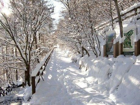 冬の三頭山周遊コーススタート地点