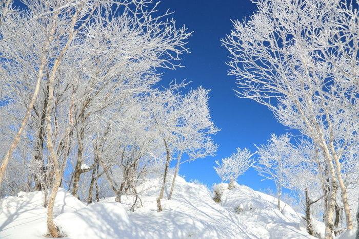 冬の赤城山の様子