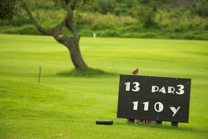 養老公園のゴルフ場