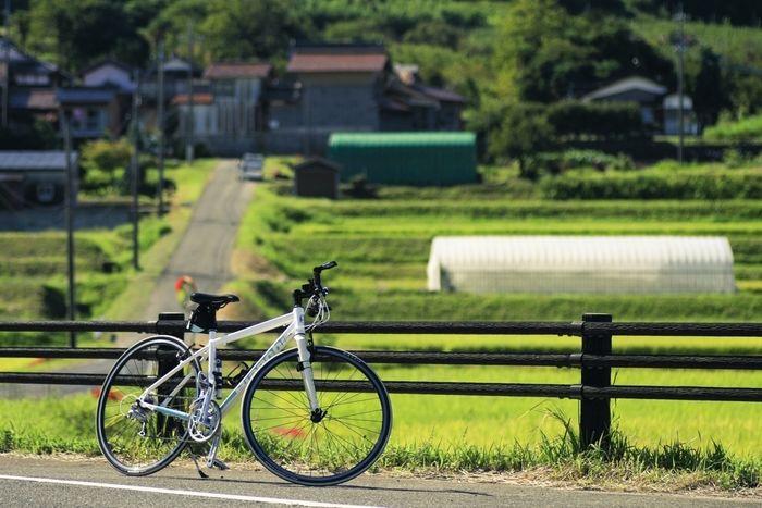 田んぼとクロスバイク