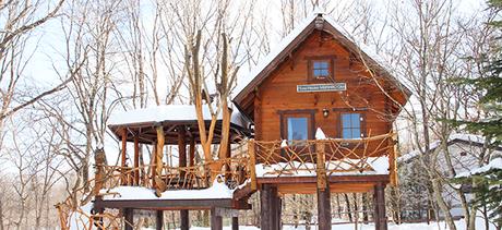 冬のスウィートグラスのツリーハウス