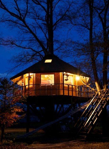夜のツリーハウスの外観