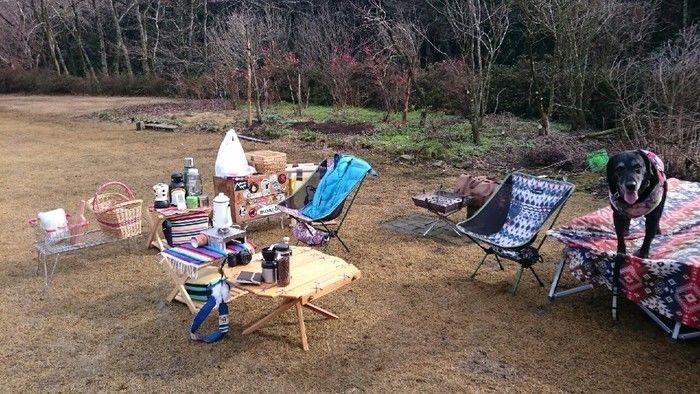 やまぼうしオートキャンプ場で犬とキャンプを楽しむ様子