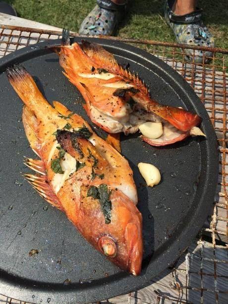 鉄板で焼かれた魚