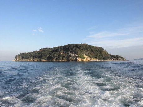 船から見た神奈川県の猿島