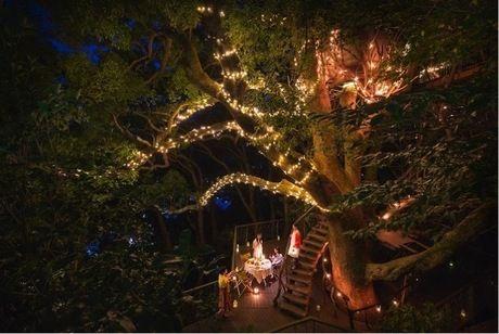 ライトアップされた夜の星野リゾート